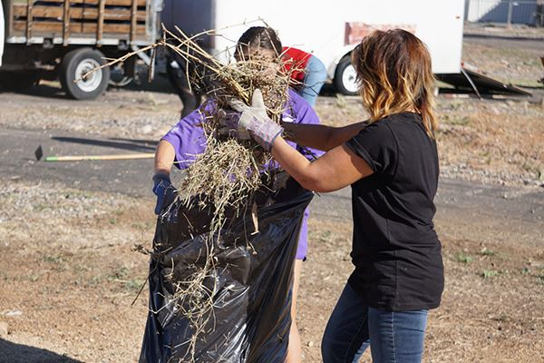 Residents and volunteers collect weeds and trash.